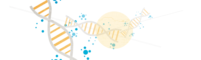 DNA-Header3