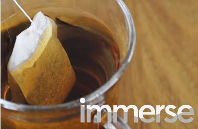 IMMERSE Study Guide: Day 24