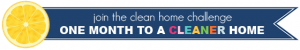 CleanHomeGraphic