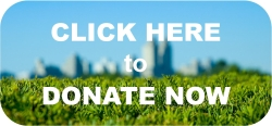 Donate now button reduced