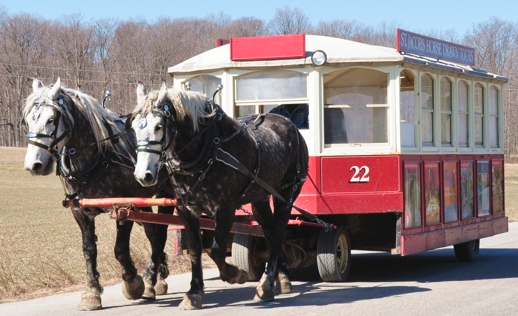 st-jacobs-horse-drawn-wagon