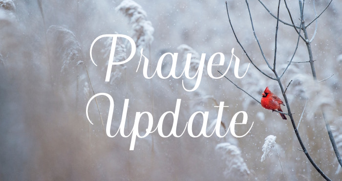 BIC Canada Prayer Update – January
