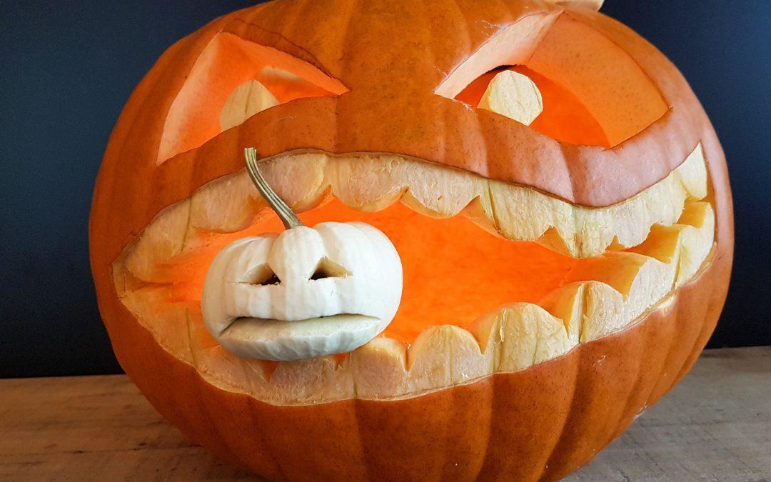 Young Adults Pumpkin Social
